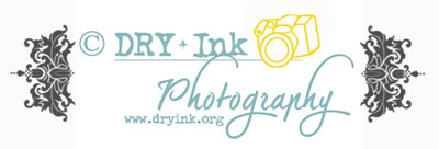 DRY Ink logo